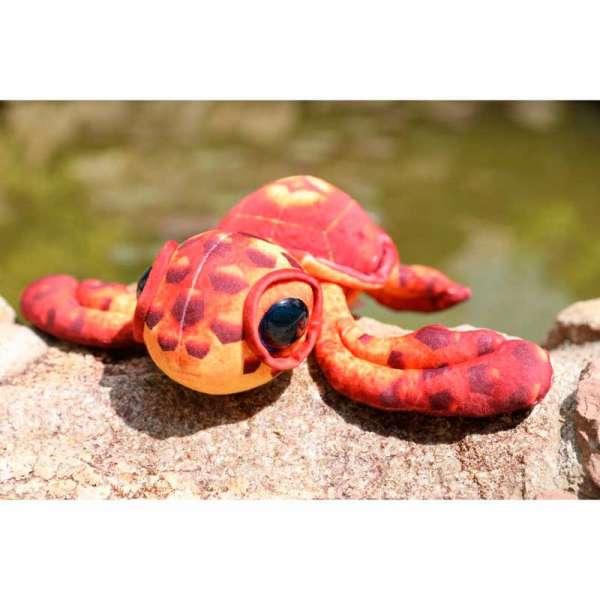 GW Черепаха 1