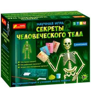 Анатомія. Скелет людини 12115017Р
