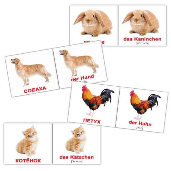 Карточки Домана Домашние животные /Haustiere мини-20