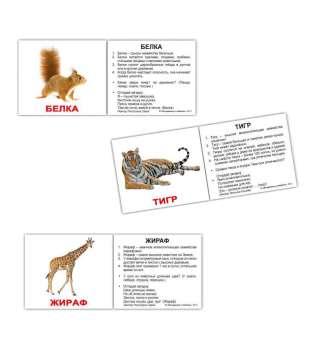 Карточки Домана Дикие животные с фактами мини-40