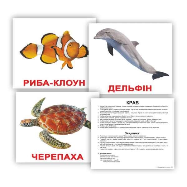 Картки Домана великі з фактами. Мешканці водойм