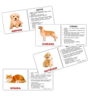 Карточки Домана Домашние животные и детёныши с фактами мини-40