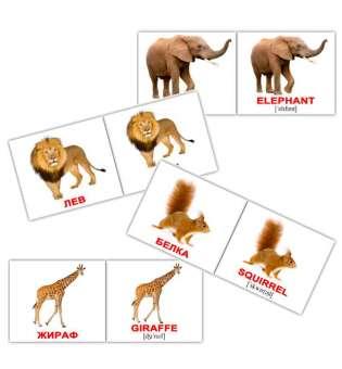 Карточки Домана Дикие животные/Wild animals мини-40