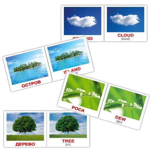 Карточки Домана Природа/Nature мини-80