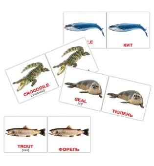 Карточки Домана Водные животные/Water animals мини-40